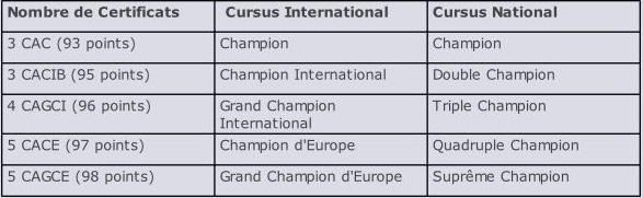 tableau catégories